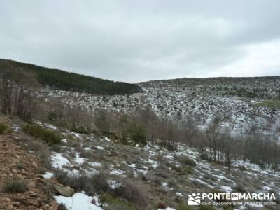 Somosierra - Camino a Montejo;rutas madrid senderismo;rutas de montaña madrid